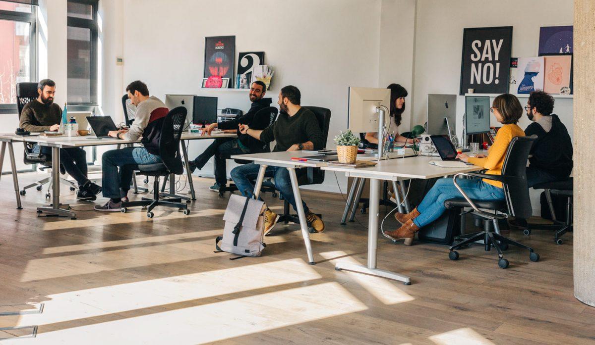 equipo copymouse studio